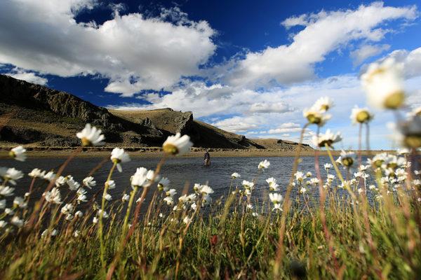 Goat-Run-Scenic-Landscape-(©-Stephan-Dombaj)