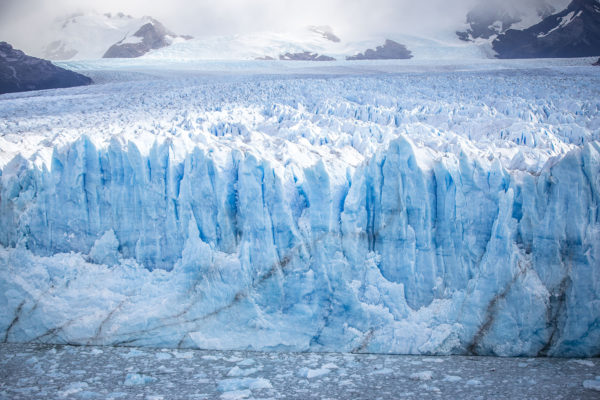Glacier Kings (C) Joshua Hutchins-9635