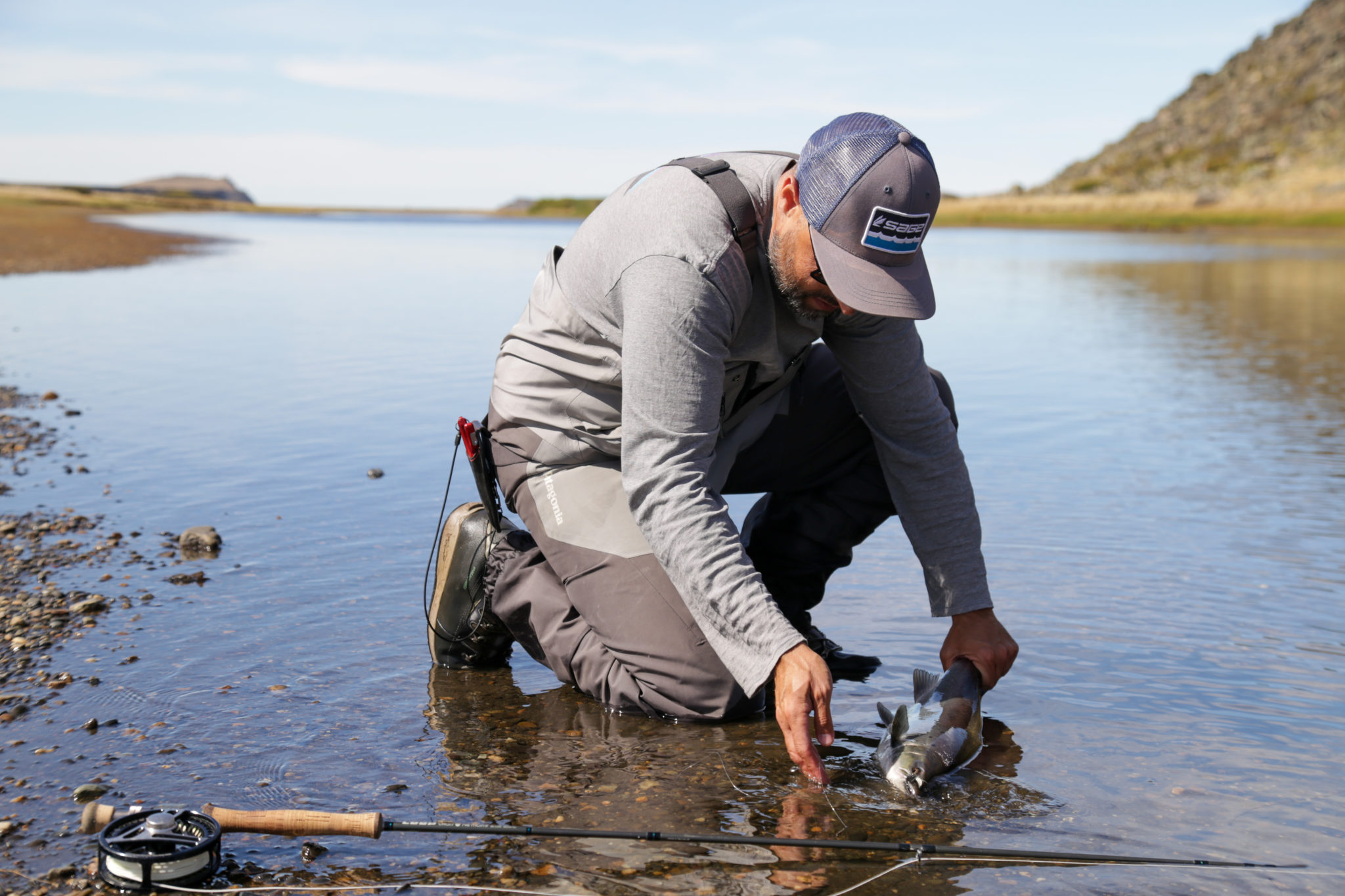 Dry Flies and Sea Trout